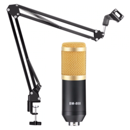 Студийный микрофон BM 800